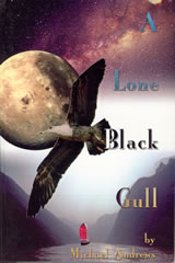 Cover image of A Lone Black Gull