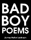 Cover image for Bad Boy Poems